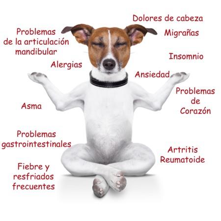 El tratamiento de la espalda y la columna vertebral en samare